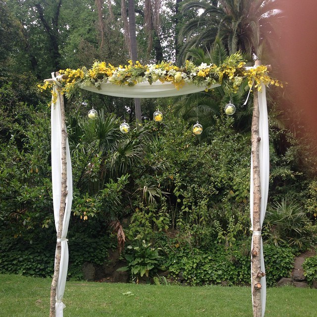 A beautiful backdrop for Lisa and Michael's wedding at the Fitzroy Gardens....thanks to theWedding Zone.